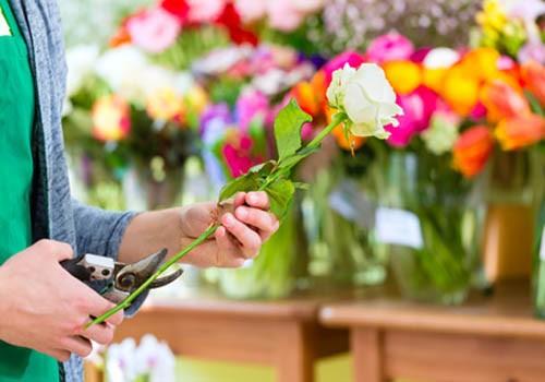 fleurs-cadeaux-gouzeaucourt-epehy-roisel